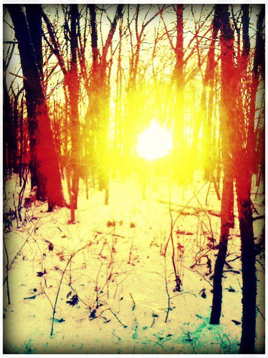 winter sun - Pixie