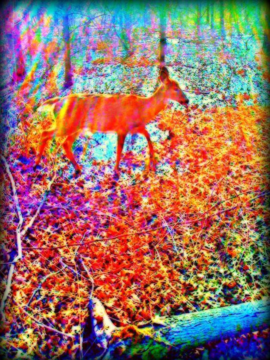 Yes Deer - Pixie