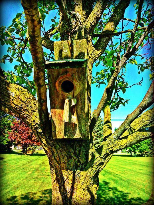 old birdhouse - Pixie