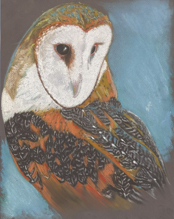 Barn Owl - Will Ford Art