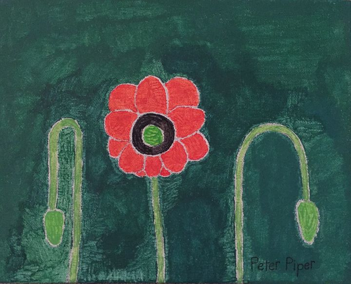 Red Poppies - Peter Piper