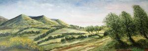 Hills at Blessington