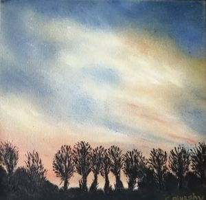 Sunset with Trees in Shadow