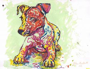 Colorful Jack Russell Terrier - Juhan Rodrik