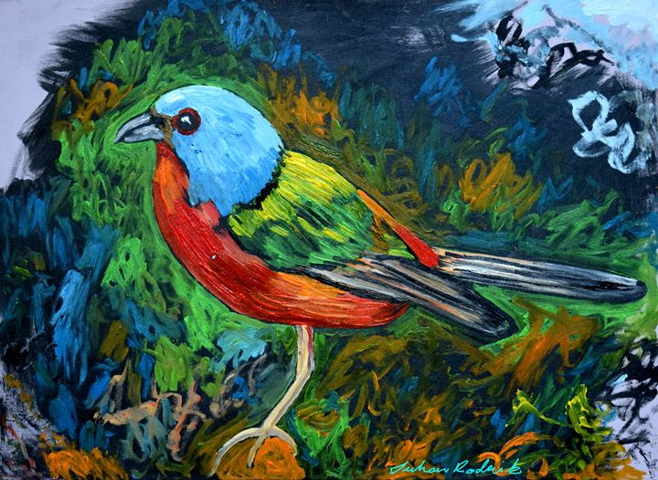 Bird - Juhan Rodrik