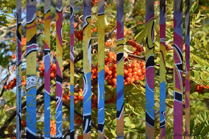 Berry Bar Code - Juhan Rodrik