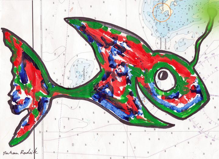 Mapped Fish - Juhan Rodrik
