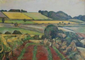 Summer Green Yellow Fields