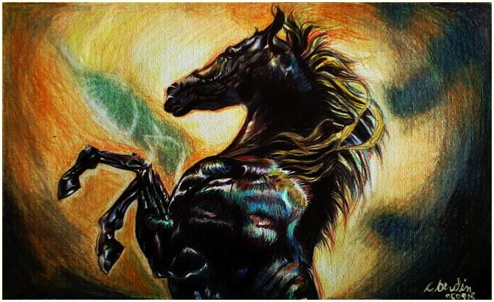 Black Stallion - C.Berdin