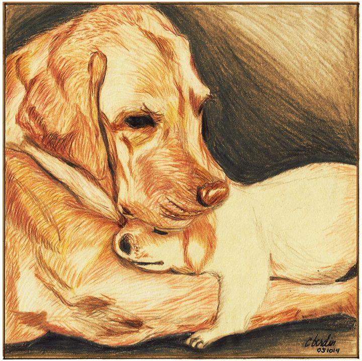 Dog and Puppy - C.Berdin