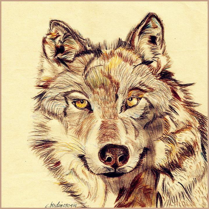Lone Wolf - C.Berdin