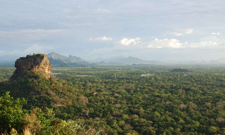 Sigiriya and the Jungle 2 - Travel Prints