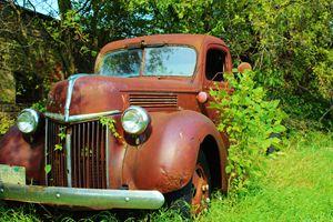 Ol' Ford Pickup 1 of 3