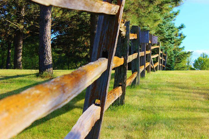 A Fence - Kruse Otto