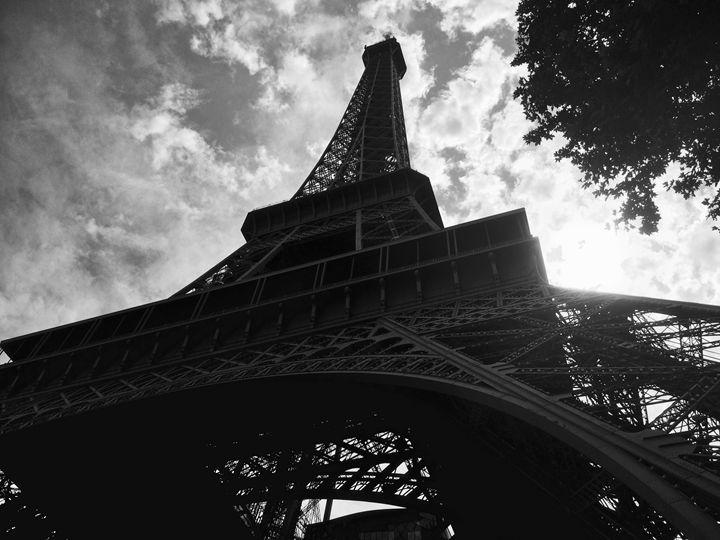 Below Tour Eiffel - Crispy zebra