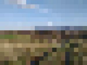 Nature Landscape 2