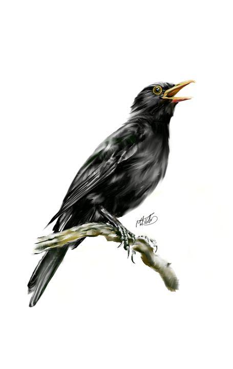 Blackbird In Oil - Mark Collins Art