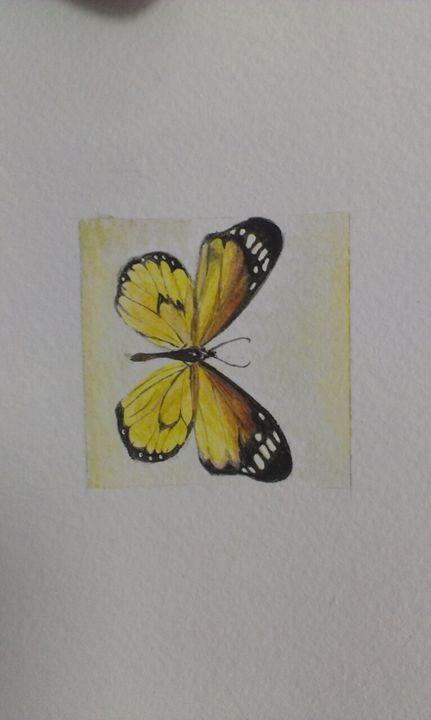 Butterfly - Dianushka
