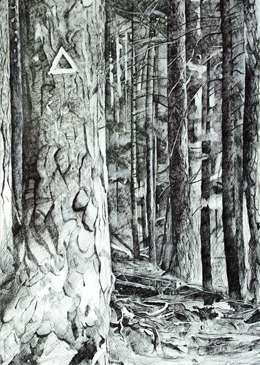Into the forest - Corina Ghetu
