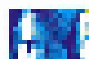 Blue Petals - Bruco Designs