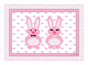 Mr & Mrs. Pink Bunny