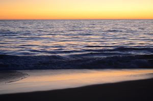 Venice Beach California Sunset