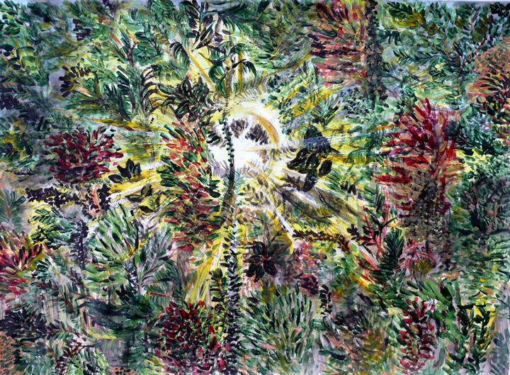 Through the jungle - Nas's Gallery