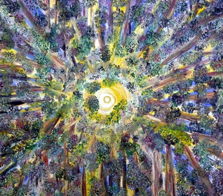 Amazonian Tree Circle - Nas's Gallery