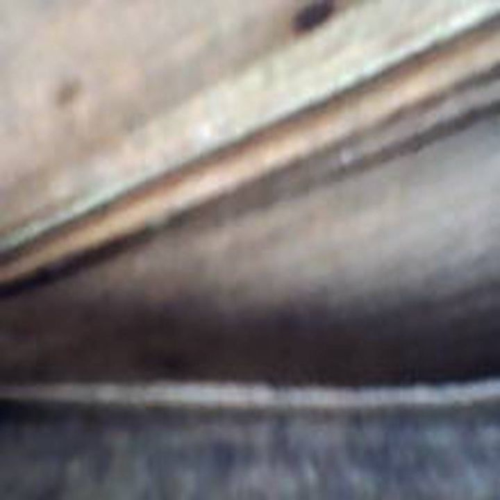 SOELUH-XLI - 480558 plus Photography
