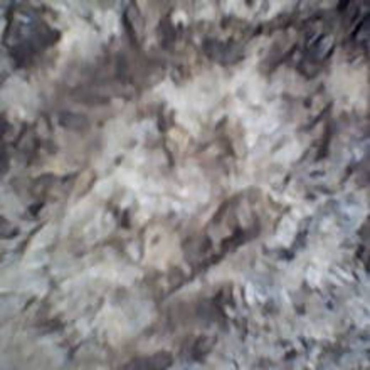 Bark VII - 480558 plus Photography