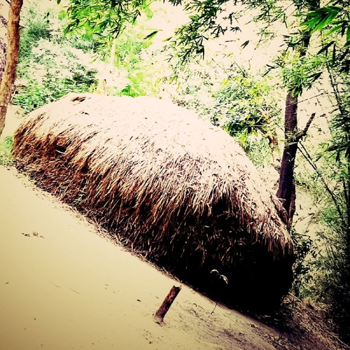 village life - Art