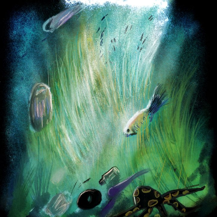 The Ocean - Life and Art