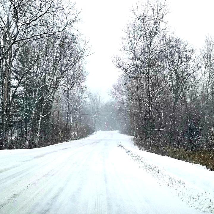 Snow in Michigan - Springfield