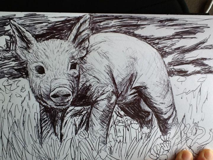 Baby pig - Animal art