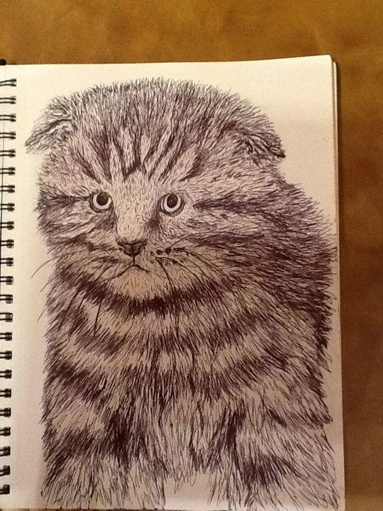 Cute kitten - Animal art