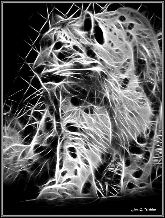 Abstract Wildcat - DunJon Fantasy Art