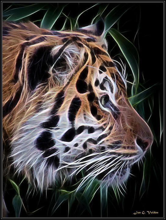 Profile Of a Tiger - DunJon Fantasy Art