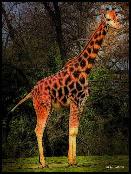 Impression of a Giraffe - DunJon Fantasy Art