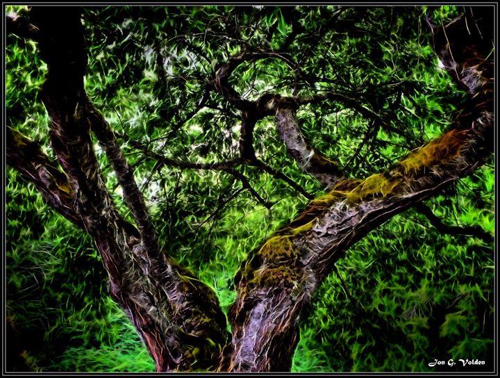 Surreal V in a Tree - DunJon Fantasy Art