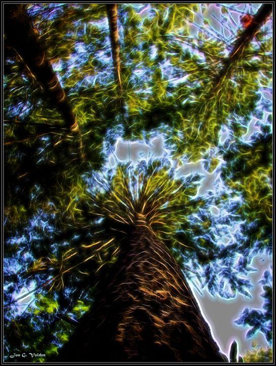 Up In The Trees - DunJon Fantasy Art