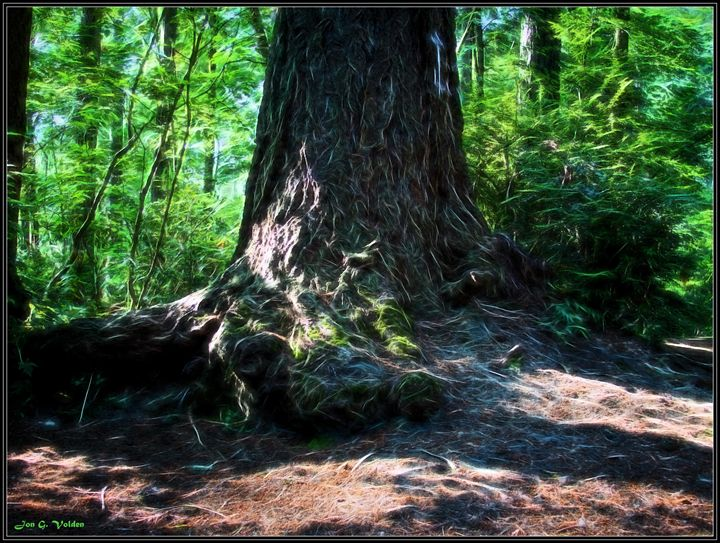 Mystic Tree - DunJon Fantasy Art
