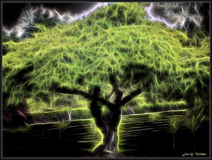 A Magic Tree - DunJon Fantasy Art