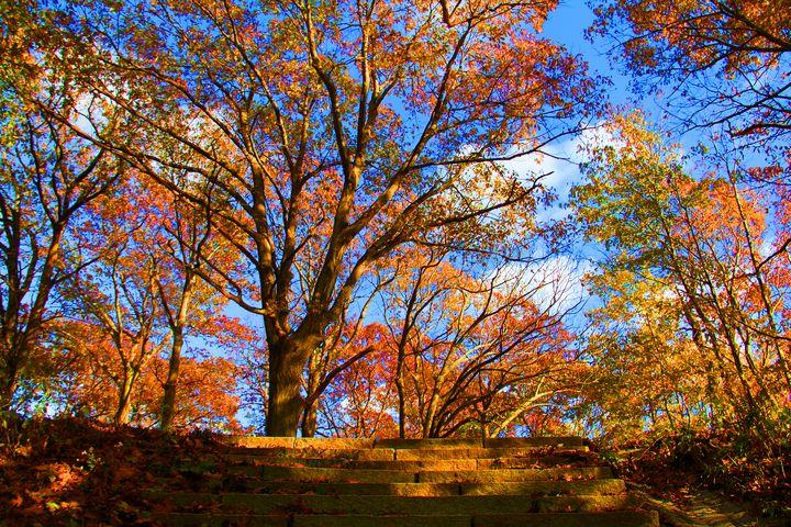 Autumn Stairs - Isaac Stearns