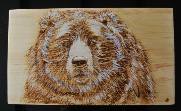 Wood burned portrait of a bear - Fire Pyrography
