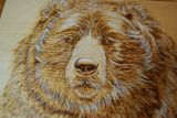 8*19 inch Bear portrait