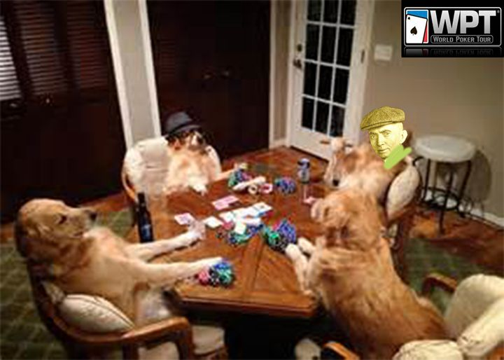The Future Of Dog Poker - jacobmicro32910