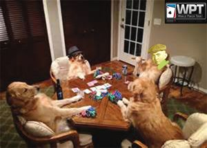 The Future Of Dog Poker