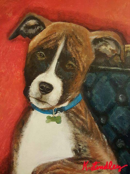 Most interesting dog in the world - KSLindley