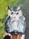Stern Fluffy Owl