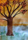 Bobab tree